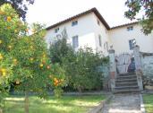 Casa Gerbera 5